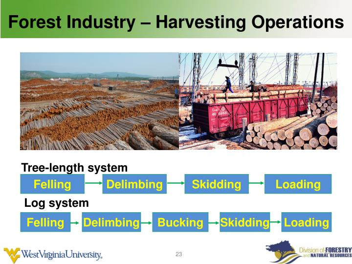 Forest Industry – Harvesting Operations