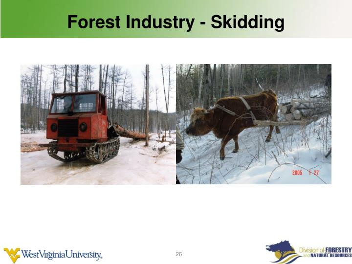 Forest Industry - Skidding