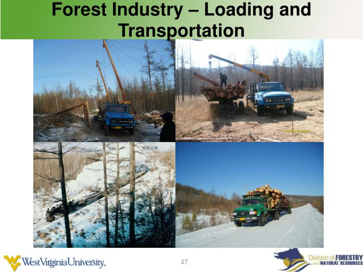Forest Industry – Loading and Transportation