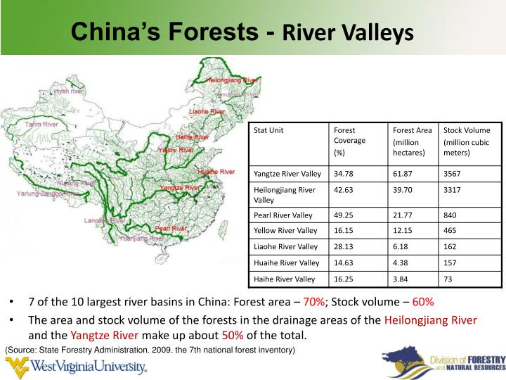 China's Forests -