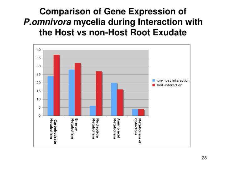 Comparison of Gene Expression of