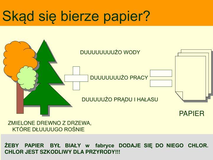 Skąd się bierze papier?