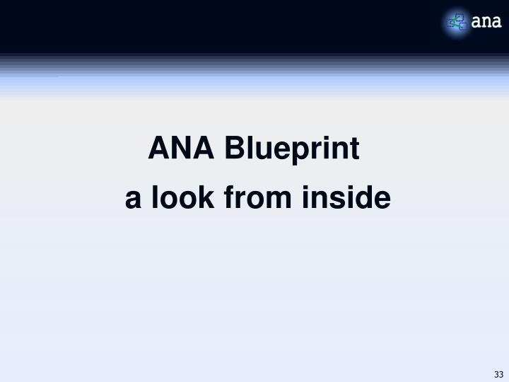 ANA Blueprint