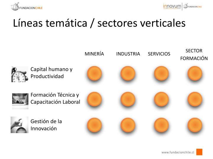 Líneas temática / sectores verticales