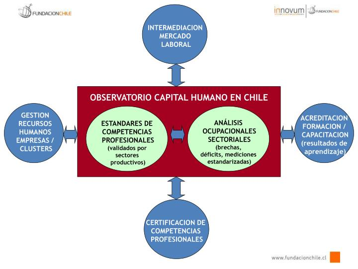 OBSERVATORIO CAPITAL HUMANO EN CHILE