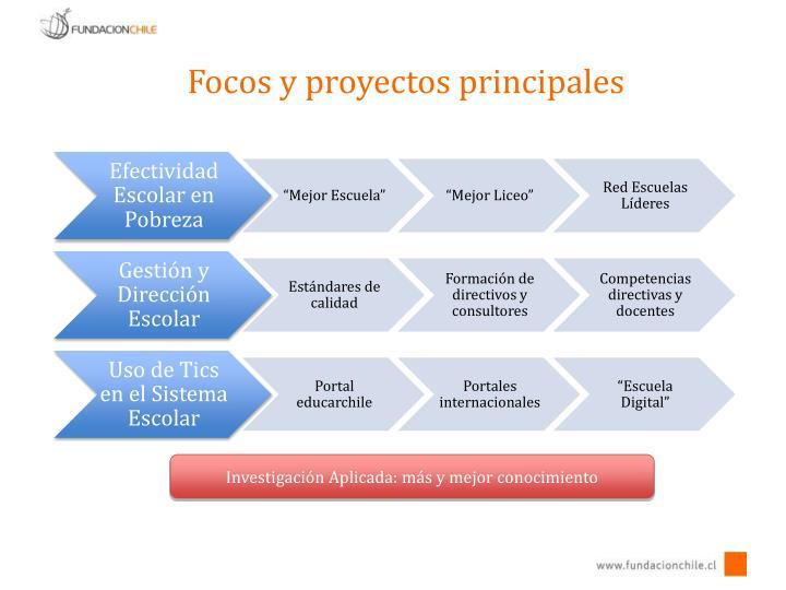 Focos y proyectos principales