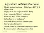agriculture in orissa overview
