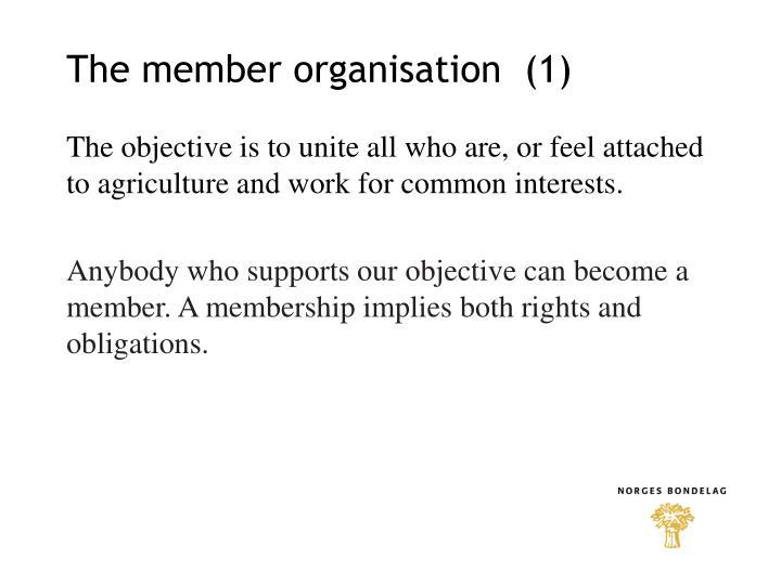 The member organisation  (1)
