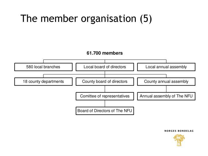 The member organisation (5)