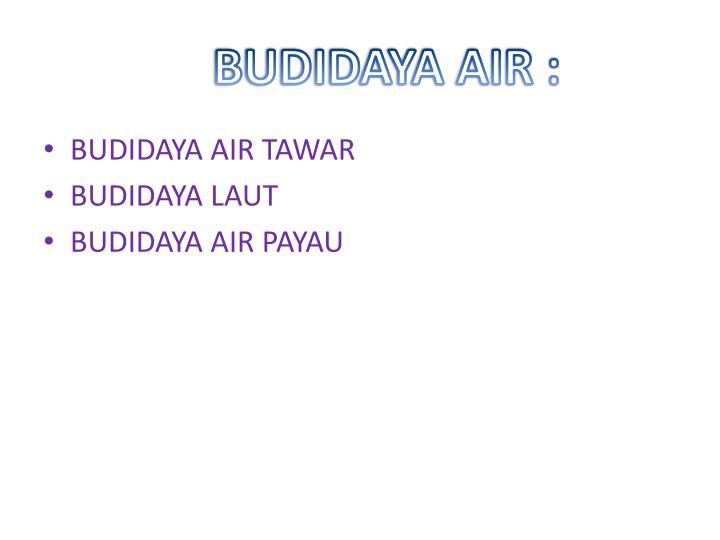 BUDIDAYA AIR :