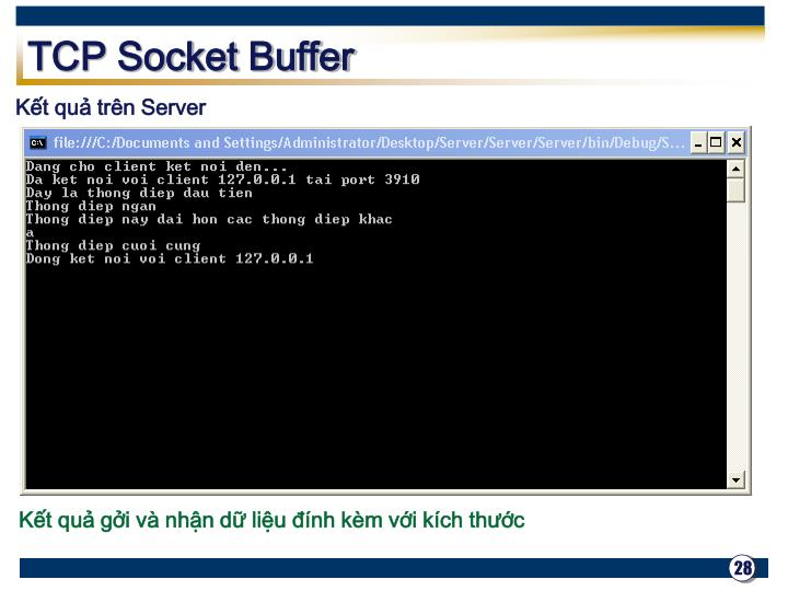 TCP Socket Buffer