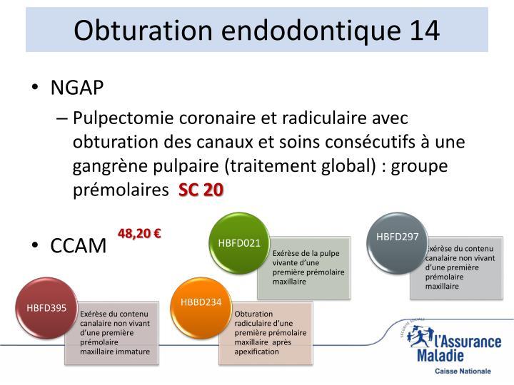 Obturation endodontique 14