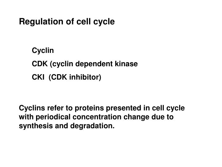 Regulation of cell cycle