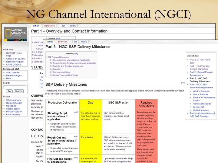 NG Channel International (NGCI)
