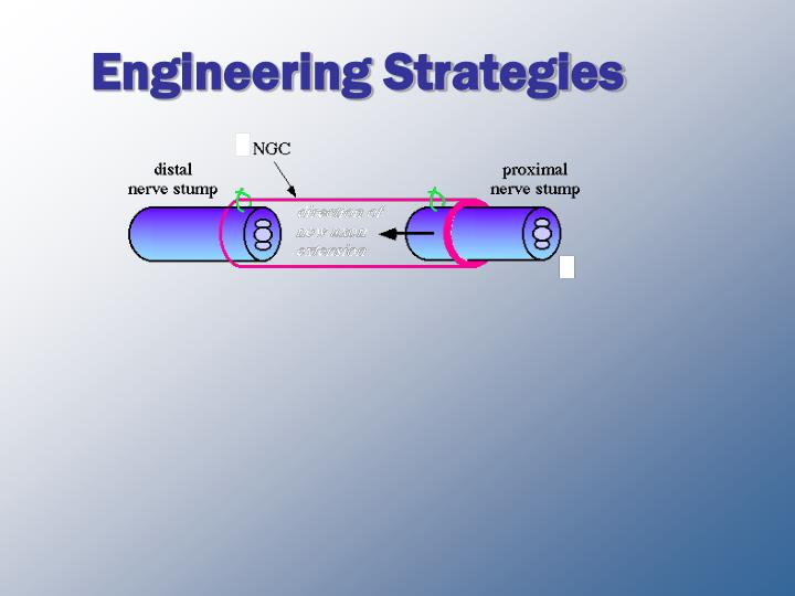 Engineering strategies