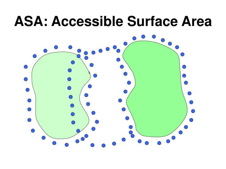 ASA: Accessible Surface Area