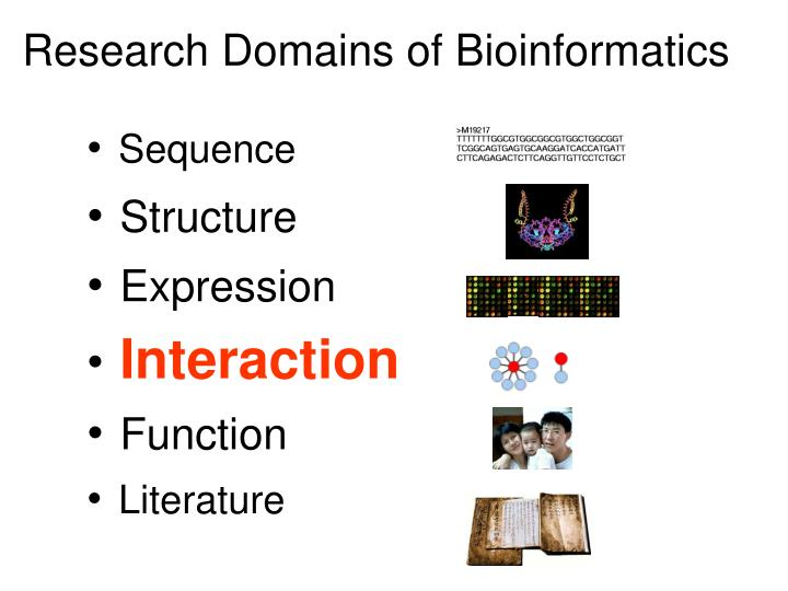 Research Domains of Bioinformatics