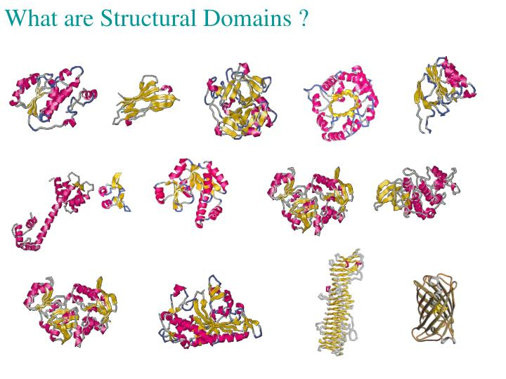 What are Structural Domains ?