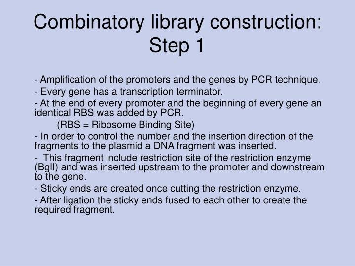 Combinatory library construction: