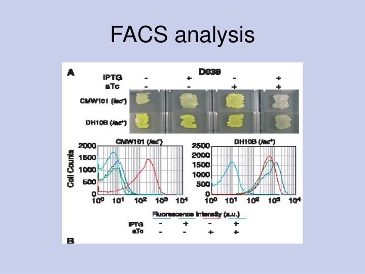 FACS analysis