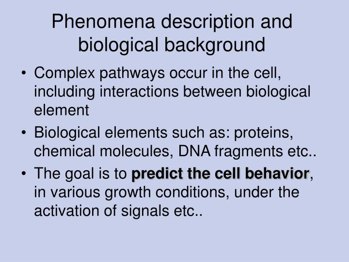 Phenomena description and biological background