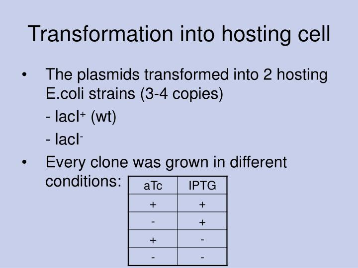 Transformation into hosting cell