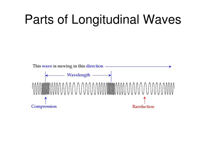 Parts of Longitudinal Waves