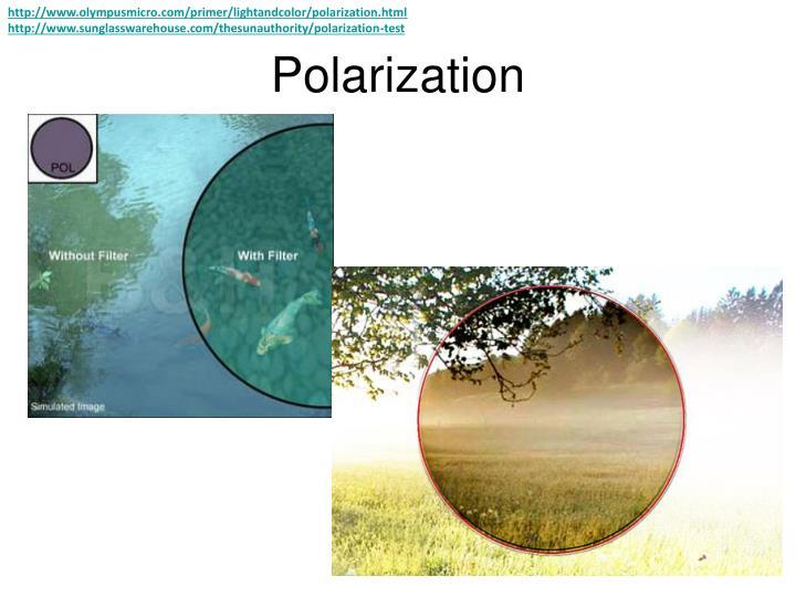 http://www.olympusmicro.com/primer/lightandcolor/polarization.html