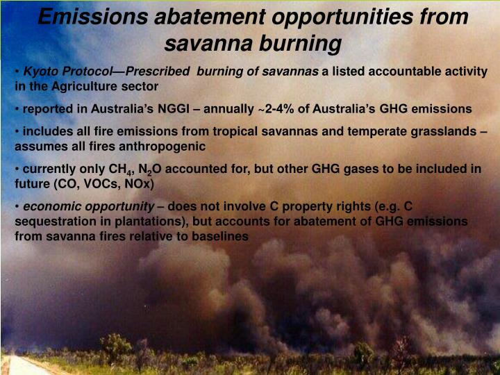 Emissions abatement opportunities from savanna burning