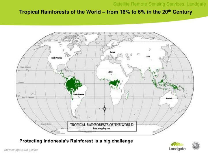 Tropical Rainforests of the World – from 16% to 6% in the 20