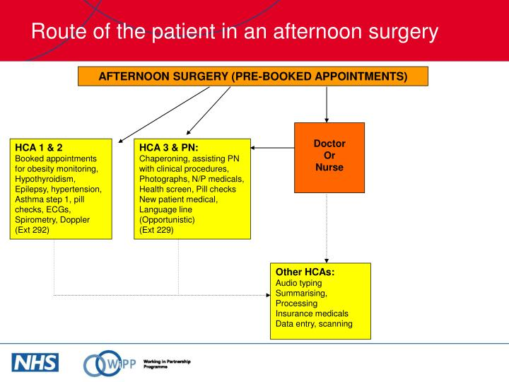 Route of the patient in an afternoon surgery
