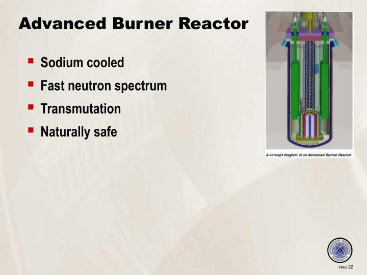 Advanced Burner Reactor