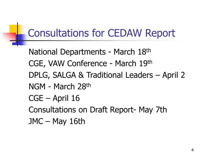 Consultations for CEDAW Report
