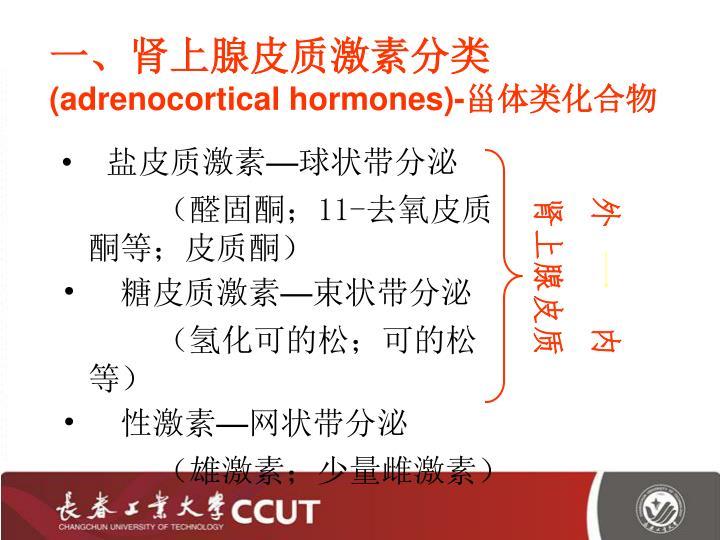 一、肾上腺皮质激素分类