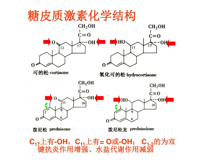 糖皮质激素化学结构