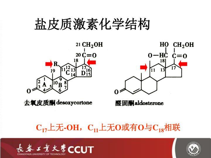 盐皮质激素化学结构