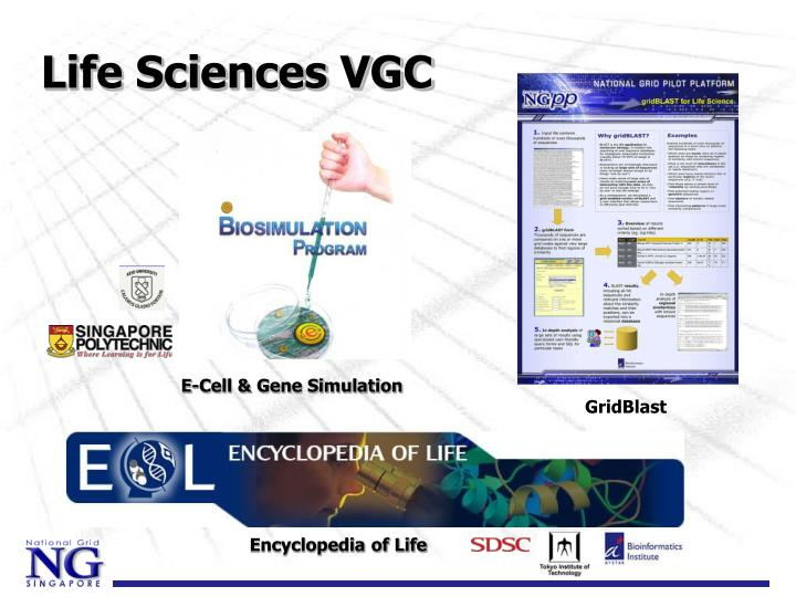 Life Sciences VGC