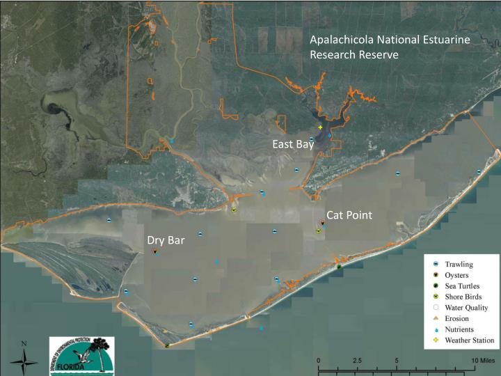 Apalachicola National Estuarine