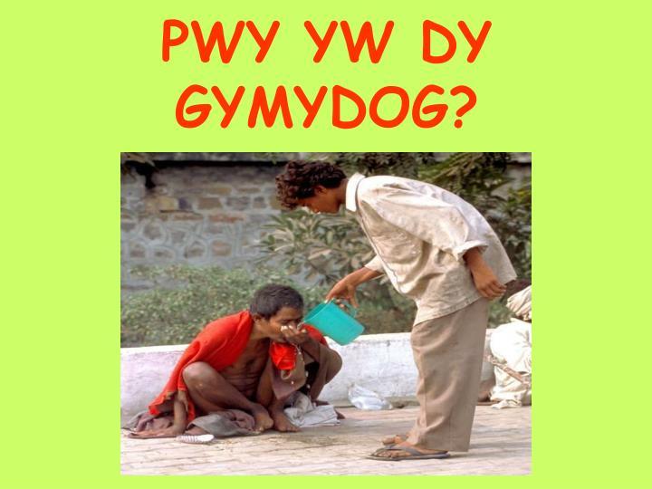 PWY YW DY GYMYDOG?