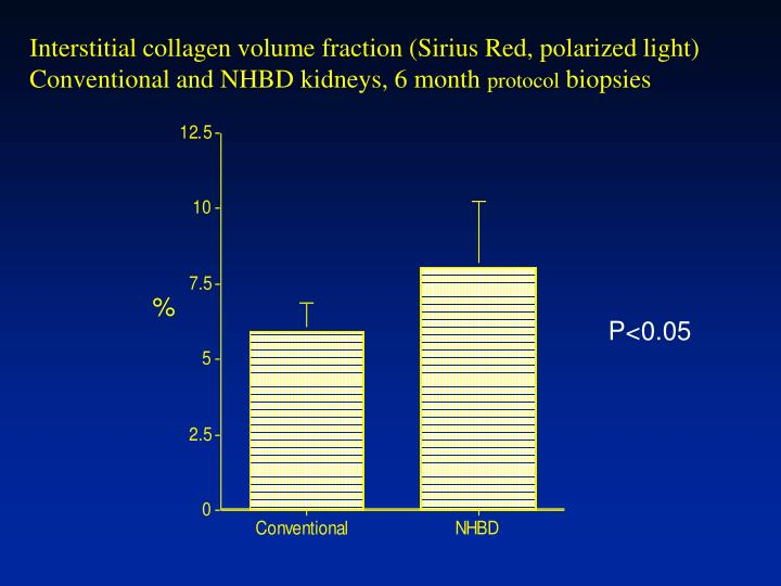 Interstitial collagen volume fraction (Sirius Red, polarized light)