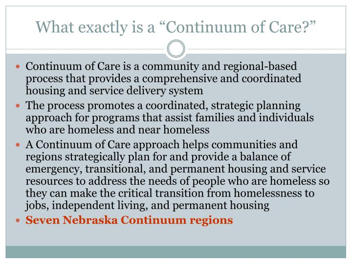 """What exactly is a """"Continuum of Care?"""""""