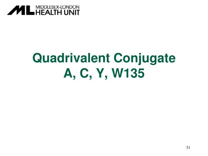 Quadrivalent Conjugate