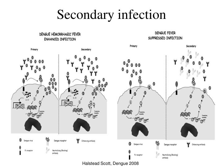 Secondary infection