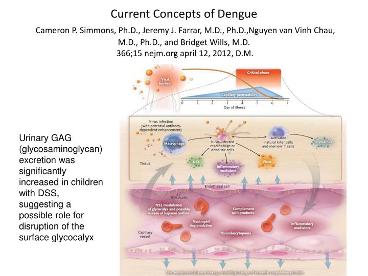 Current Concepts of Dengue