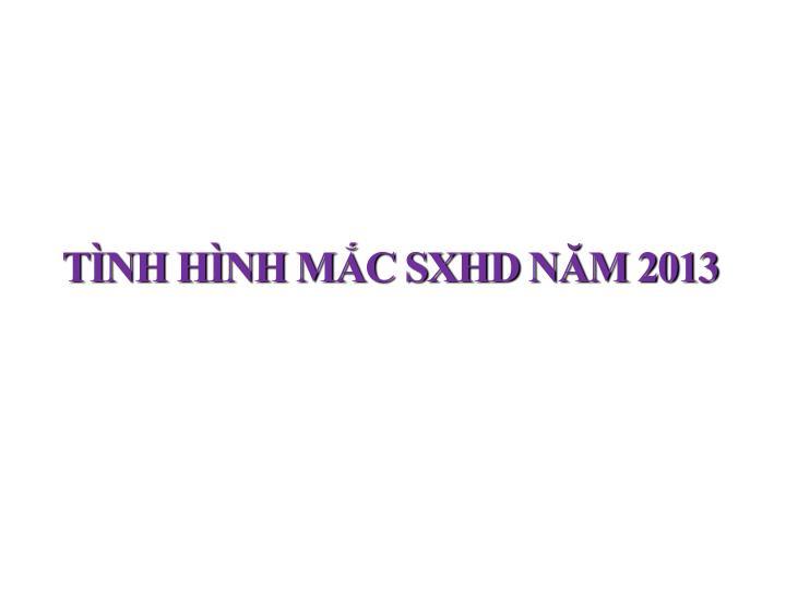 TÌNH HÌNH MẮC SXHD NĂM 2013