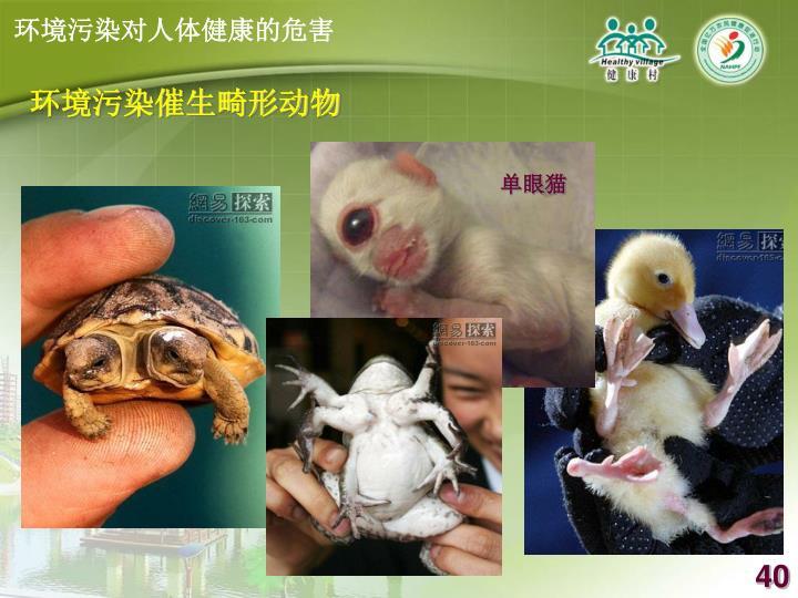环境污染催生畸形动物