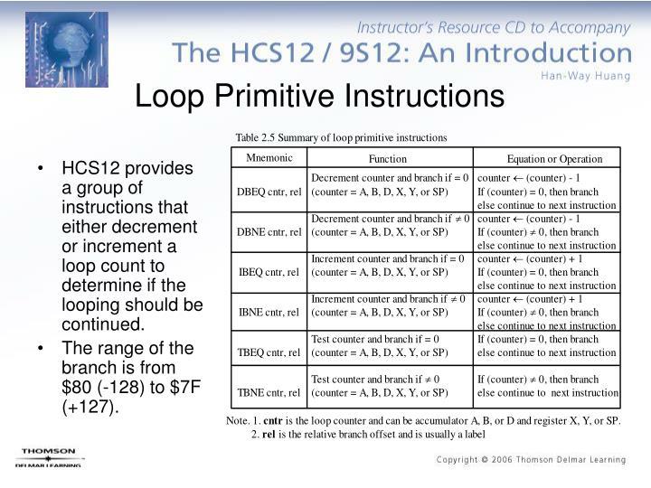 Loop Primitive Instructions
