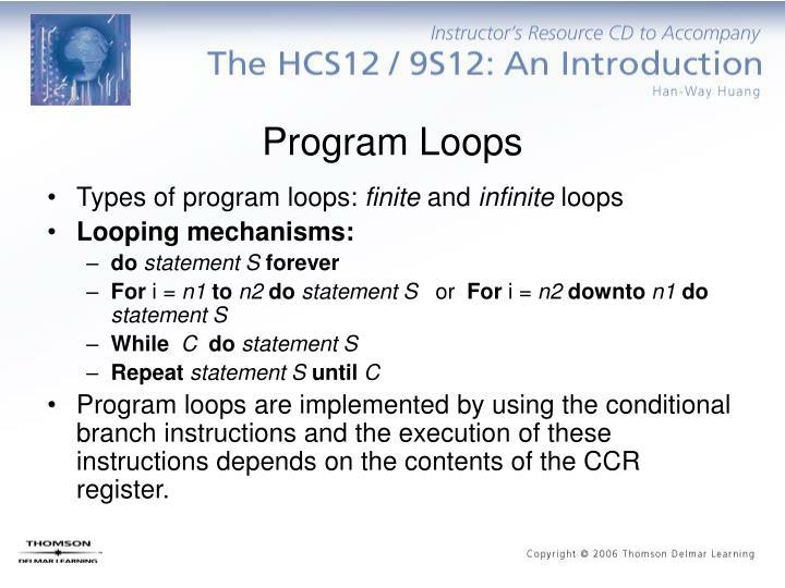 Program Loops