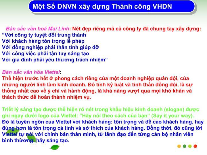 Mt S DNVN xy dng Thnh cng VHDN