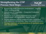 strengthening the cdp process next steps